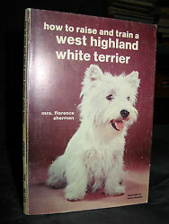 How To Raise And Train A West Highland White Terrier Dog Care & Health