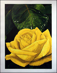 G H Rothe Yellowe Rose Fine Art Serigraph On Arches Paper Signed Submit Offer