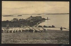 Postcard Mt Kineo Me Golf Course Country Club House W/sheep Lawn Mowers 1907