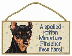 MINIATURE PINSCHER- A Spoiled Rotten---Lives Here Wood SIGNPLAQUE 5 X 10
