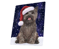 Let it Snow Christmas Holiday Cairn Terrier Dog Woven Throw Sherpa Blanket T62
