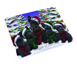 Scottish Terrier Dog Christmas Family Holiday Woven Throw Sherpa Blanket T40