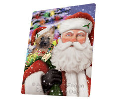 Jolly Old Saint Nick Santa Cairn Terrier Dog Woven Throw Sherpa Blanket T389