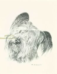 # 100 SKYE TERRIER portrait  dog art print * Pen and ink drawing * Jan Jellins