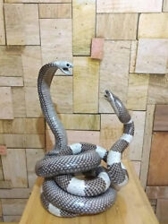 FIGHTING Cobra vs Rattle Snake 100% Genuine Real Snake Odities Taxidermy Statue