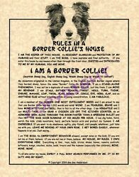 Rules In A Border Collie#x27;s House