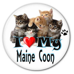 I Love My Maine Coon Kitten Cat 3 Safety Pin Back Button