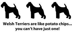 Welsh Terriers Are Like Potato Chips! Can't Have Just One T-shirt Welsh Terrier