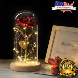 Best Selling Lovely Galaxy Rose With Led Light In Glass Dome [free Shipping]