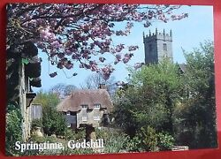 Springtime At Godshill Postcard Isle Of White By J. Salmon Church And Thatched