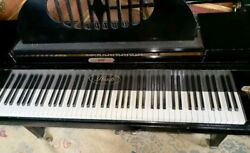 Excellent IBACH Double Overstrung Baby Grand Piano 1920 Black Ebony Delivery