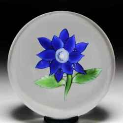 Antique Boston And Sandwich Glass Company Blue Poinsettia Glass Paperweight