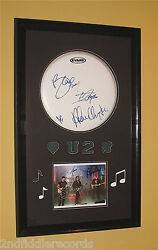 U2autographed 23 X 38 Drumhead And Photograph Framed Display W/coabonothe Edge