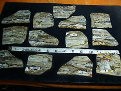 Many Picture Onyx Slabs 2.6 Pounds Lbs Lapidary Rough Druzy Calcite