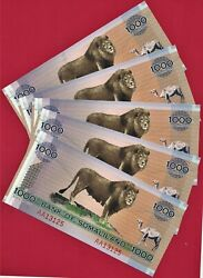 5 X 1000 Shillings 2006 Bank Of Somaliland P-cs1a Dealer / Collectorand039s Item