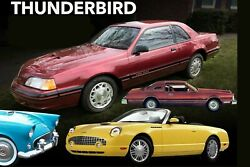 Ford Thunderbird, 24 X 36 Inch Poster,