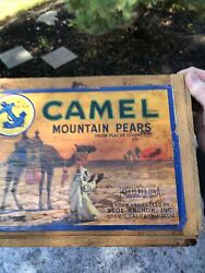 Vintage Wooden Camel Mountain Pears Blue Anchor Fruit Wooden Crate Loom Is Calif