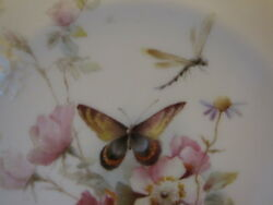 12 Antique Royal Worcester Floral Butterfly Insects Plates Hand Painted Marked