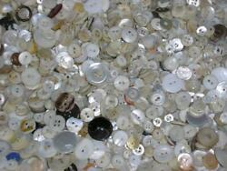 3 Lbs Lot Vintage Mother Of Pearl Mop Shell Buttons
