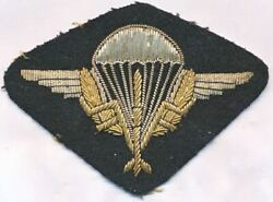 Interesting Original Embroidered Paratrooper Shevron Sleeve Patch Insignia