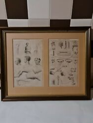 Antique Vintage 2 X Printing Press Drawings Blackie And Sons Surgery Framed