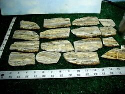 16 Dendritic Onyx Slabs 3 Pounds Lbs Lapidary Rough Slab
