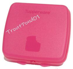 Tupperware Sandwich Keeper Contemporary Clasp Fuchsia Pink Storage Container