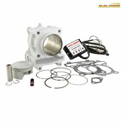 Malossi M3116090 Cylinder Competition Piaggio 125 Beverly 2010-2010