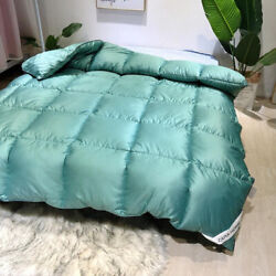 Duvet Core Can Be Washed Exquisite Fluffy Thick Winter Bedding Feather Quilt