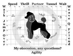 Poodle Dog Agility Obsession? T shirt Grey w black Size Small to Large only SALE