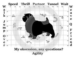 Norfolk Terrier Dog Agility or Obedience Obsession Any Questions? T shirt