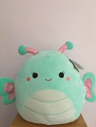 Squishmallow Reina The Butterfly Sz 16 Pillow Squooshems Kelly Toy