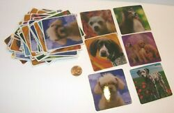 new 84 SHEETS CHILDRENS STICKERS POODLE DOG COLLIE CHIHUAHUA DALMATION CRAFTS