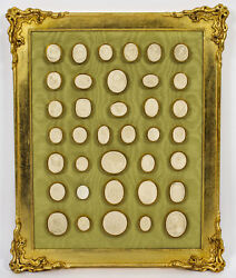 Antique Gilt Framed Collection 36 Grand Tour Classical Intaglios 19th C