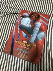 Hot Toys Spiderman Homemade Suit