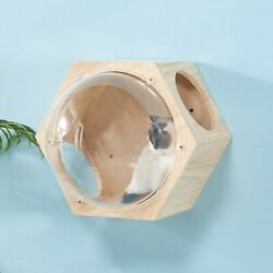 Cat House Capsule Frame Wall-mounted Wood Toy Kitten Pet Furniture Play Safe Fun