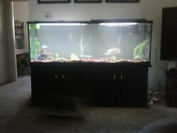 140 Gallon Aquarium, Complete With Stand, Heater, Filter, Air, Scenery. Vg Cond