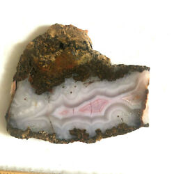 Agua Nueva Agate Nice Ghost Fortification Pink White Mexico 1.3 Ozs