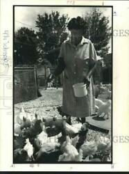 1982 Press Photo Orelia Johnson Keeps Laying Hens And Roosters In Her Backyard