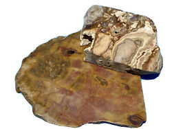 Red And Pastelite Jasper Slabs Lapidary Rough For Cabochons Lot Of 2 Old Stock