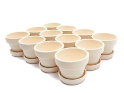 12x Mini Terra Cotta Terracotta Pots With Saucer Flower Clay Planters Small 2.9