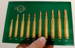 Vintage Beauty Weatherby 50th Anniversary Ammo Display Rare Green Sign Hunting