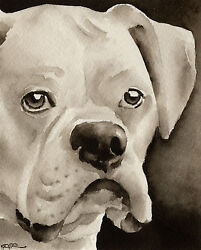 White Boxer Art Print Sepia Watercolor Painting by Artist DJR