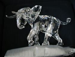 Elephant 2006 Scs Limited Edition Of 10,000 Best Offers Considered