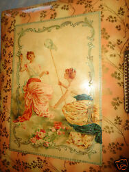 Antique Victorian Ladies Catch Butterfly Pink Rose Print Celluloid Photo Album