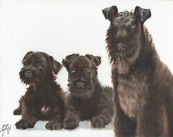 Original Oil Art KERRY BLUE TERRIER Portrait Painting PUPPY DOG Artist Signed