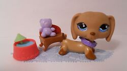 Lps 518 Dog Dachshund Lot Brown W Blue Eyes With Accessories