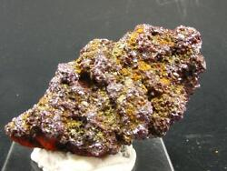 Very Rare Proustite Cluster From Morocco - 2.0