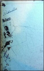 Robert Motherwell Artist Early Sketches In His 1936 Stanford Binder