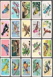 1959 Brooke Bond Songbirds Of North America Trading Cards Complete Set Of 48